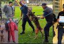 1° Intercâmbio de Cães de Faro e Abordagem Tática